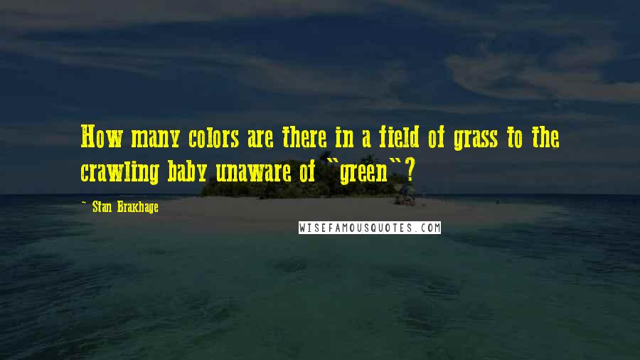 """Stan Brakhage quotes: How many colors are there in a field of grass to the crawling baby unaware of """"green""""?"""