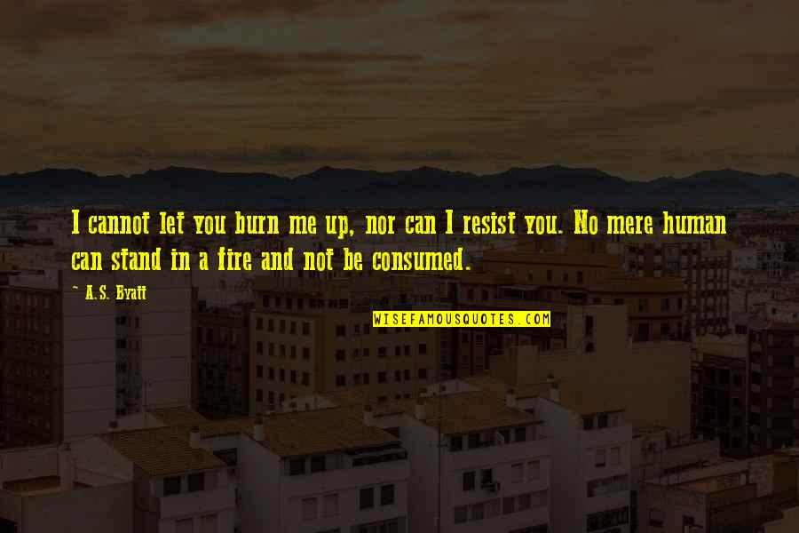 Stand Be Me Quotes By A.S. Byatt: I cannot let you burn me up, nor