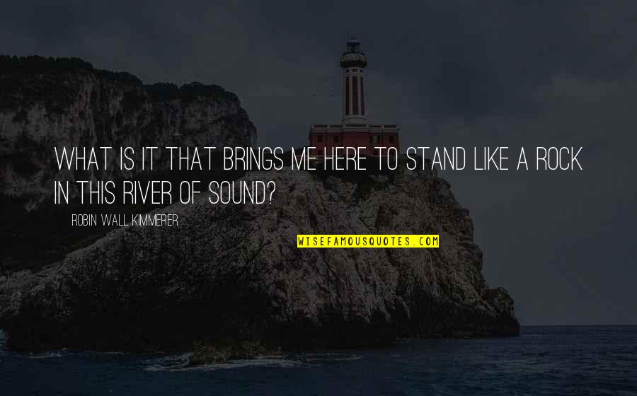 Stand On The Rock Quotes By Robin Wall Kimmerer: What is it that brings me here to