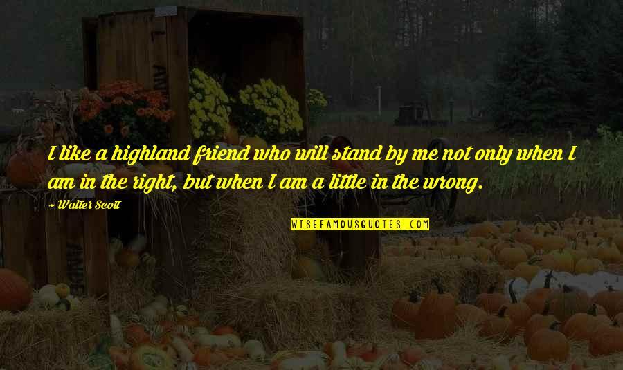 Stand Out Like A Quotes By Walter Scott: I like a highland friend who will stand