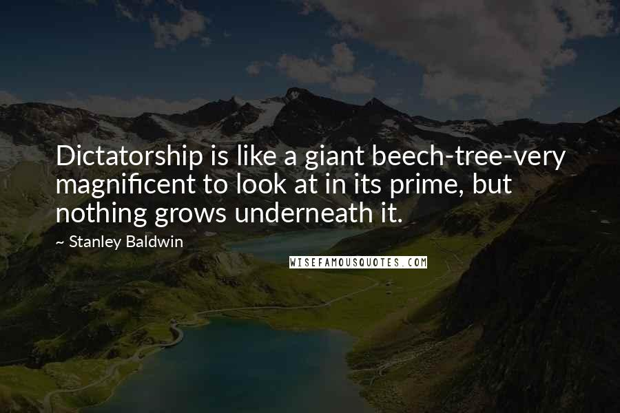 Stanley Baldwin quotes: Dictatorship is like a giant beech-tree-very magnificent to look at in its prime, but nothing grows underneath it.