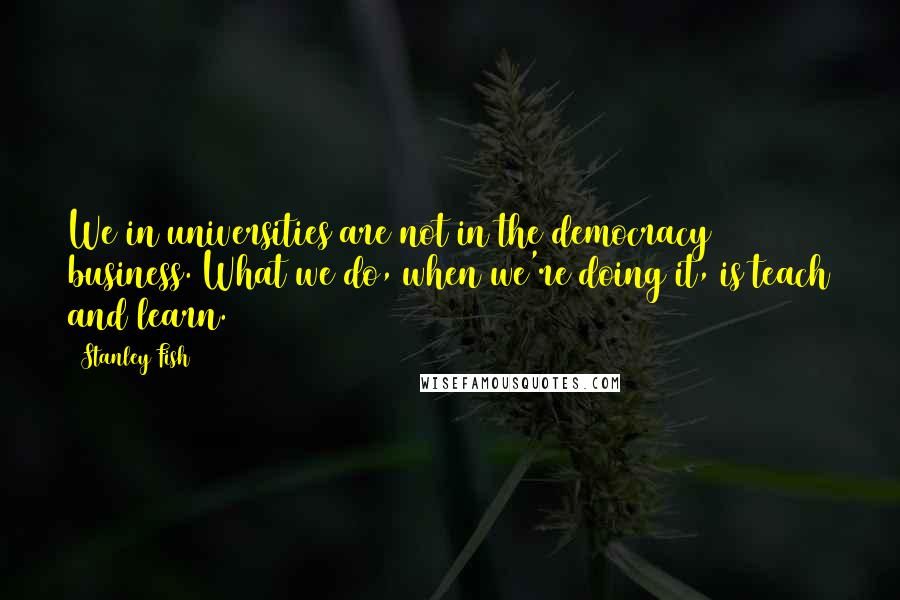 Stanley Fish quotes: We in universities are not in the democracy business. What we do, when we're doing it, is teach and learn.