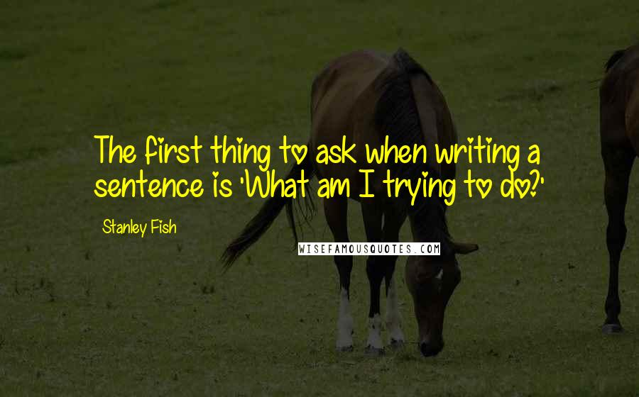 Stanley Fish quotes: The first thing to ask when writing a sentence is 'What am I trying to do?'