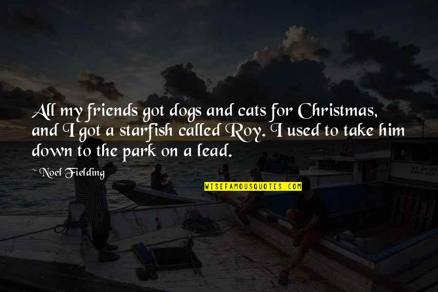 Starfish Quotes By Noel Fielding: All my friends got dogs and cats for