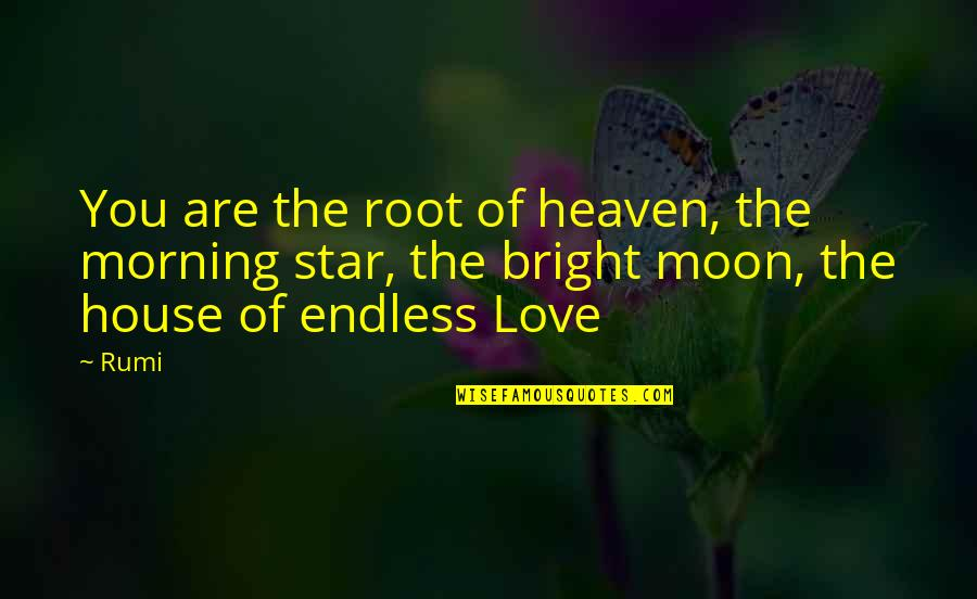 Stars And Heaven Quotes By Rumi: You are the root of heaven, the morning