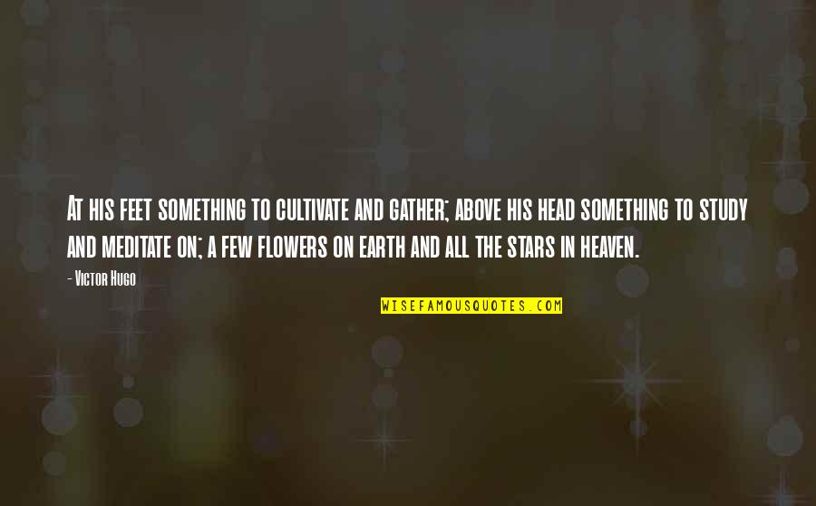 Stars And Heaven Quotes By Victor Hugo: At his feet something to cultivate and gather;