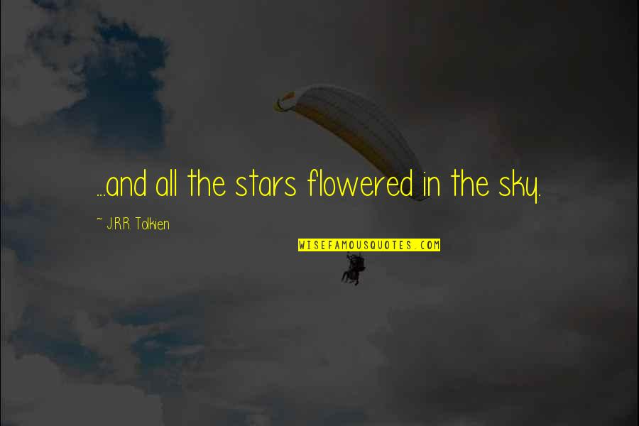 Stars In The Sky Quotes Top 100 Famous Quotes About Stars In The Sky