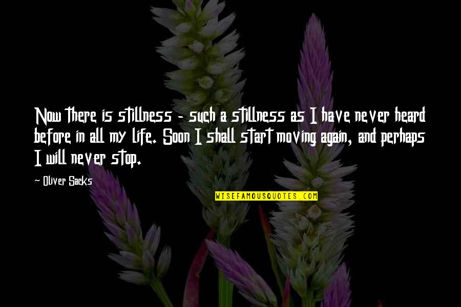 Start Life Now Quotes By Oliver Sacks: Now there is stillness - such a stillness