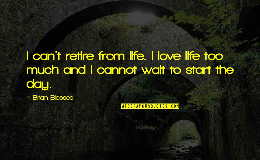 Start To Love Quotes By Brian Blessed: I can't retire from life. I love life