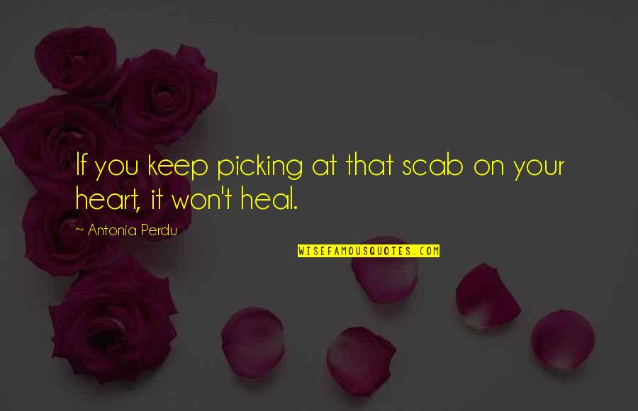 Starting To Love Quotes By Antonia Perdu: If you keep picking at that scab on
