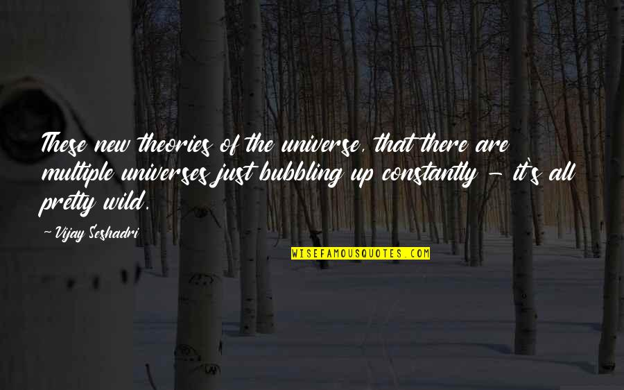 Startrek Quotes By Vijay Seshadri: These new theories of the universe, that there