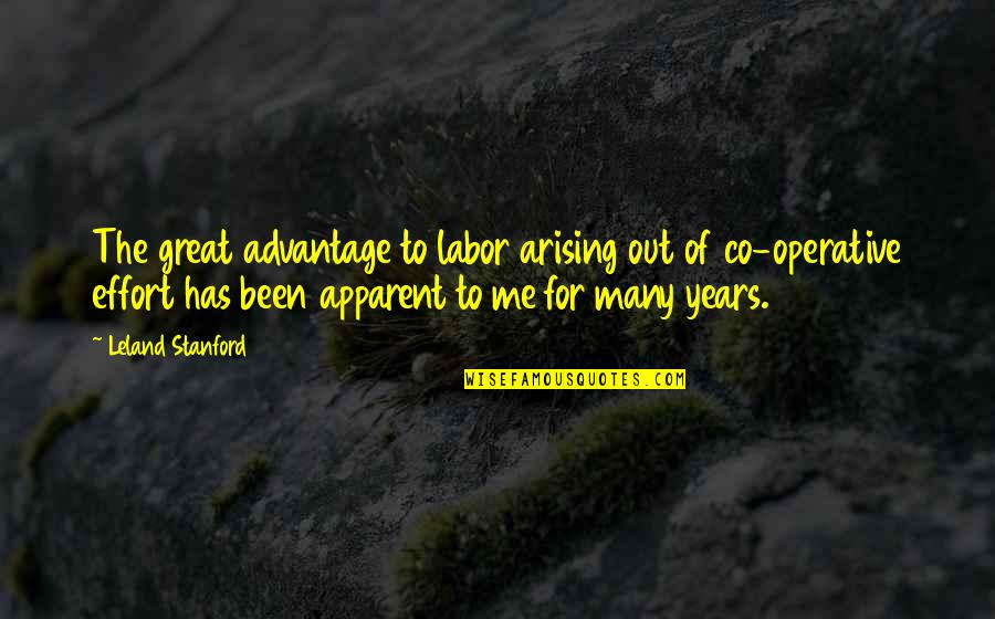Statistics Numbers Quotes By Leland Stanford: The great advantage to labor arising out of