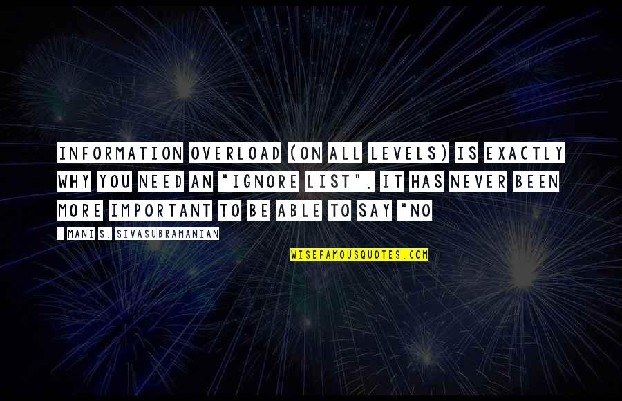 Stay Focused Quotes By Mani S. Sivasubramanian: Information overload (on all levels) is exactly WHY