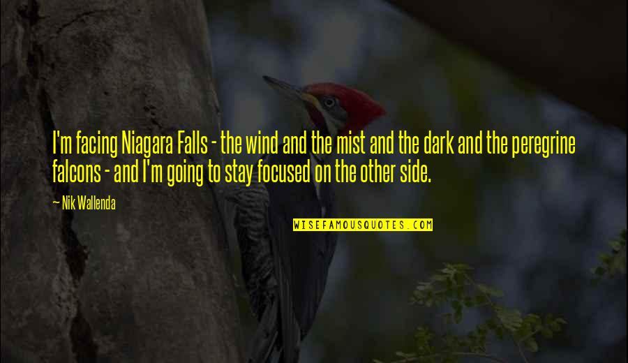 Stay Focused Quotes By Nik Wallenda: I'm facing Niagara Falls - the wind and