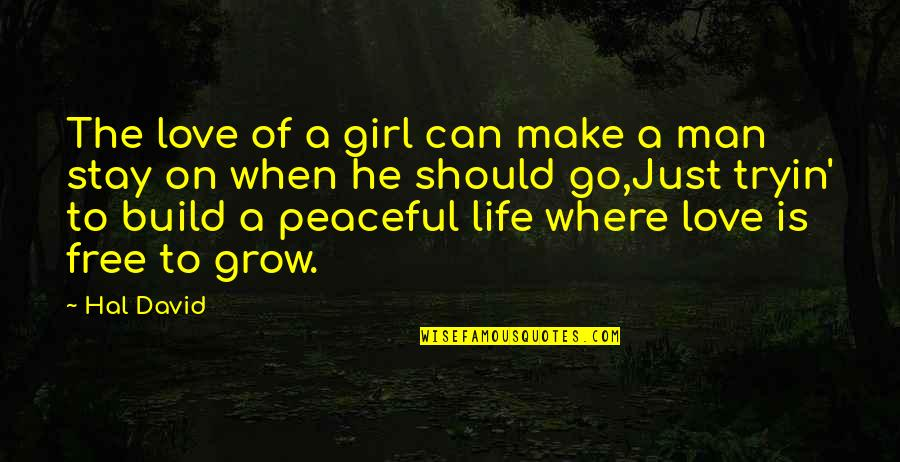 Stay Out Of My Love Life Quotes By Hal David: The love of a girl can make a