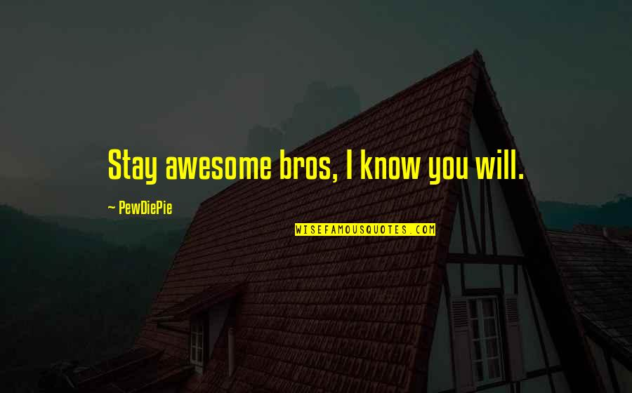 Stay Quotes By PewDiePie: Stay awesome bros, I know you will.