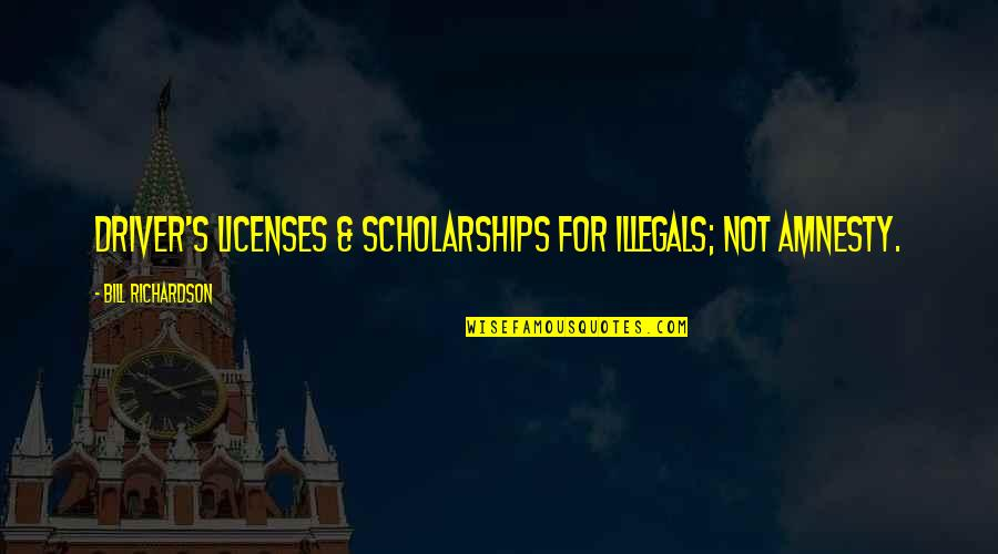Staying Grounded In Life Quotes By Bill Richardson: Driver's licenses & scholarships for illegals; not amnesty.