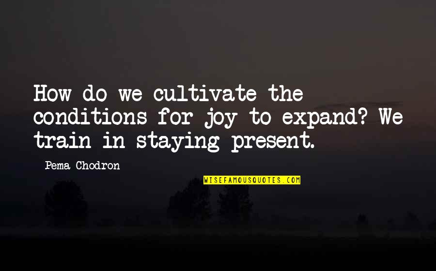 Staying In Quotes By Pema Chodron: How do we cultivate the conditions for joy