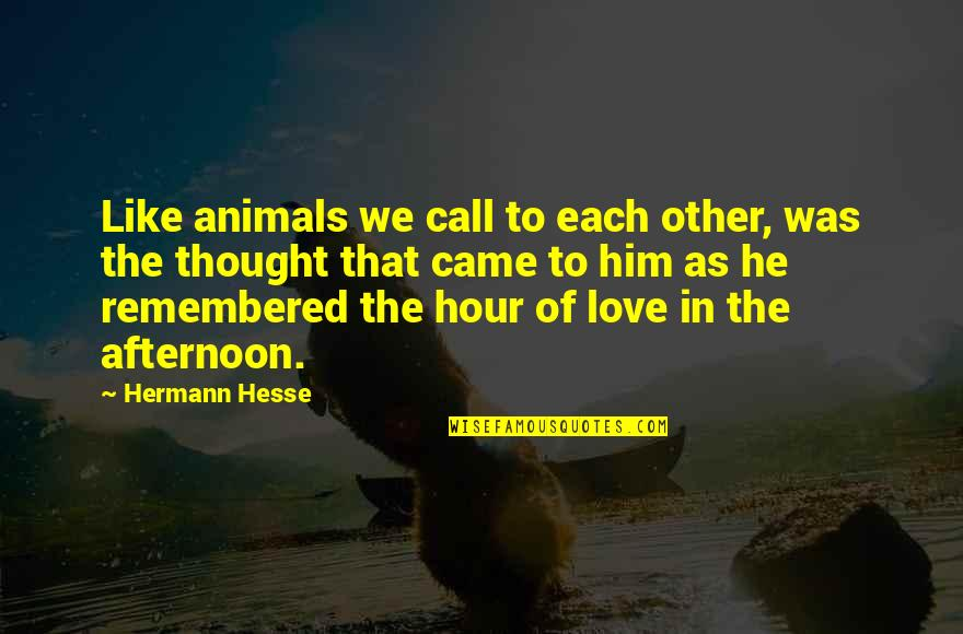 Staying Strong Positive Quotes By Hermann Hesse: Like animals we call to each other, was