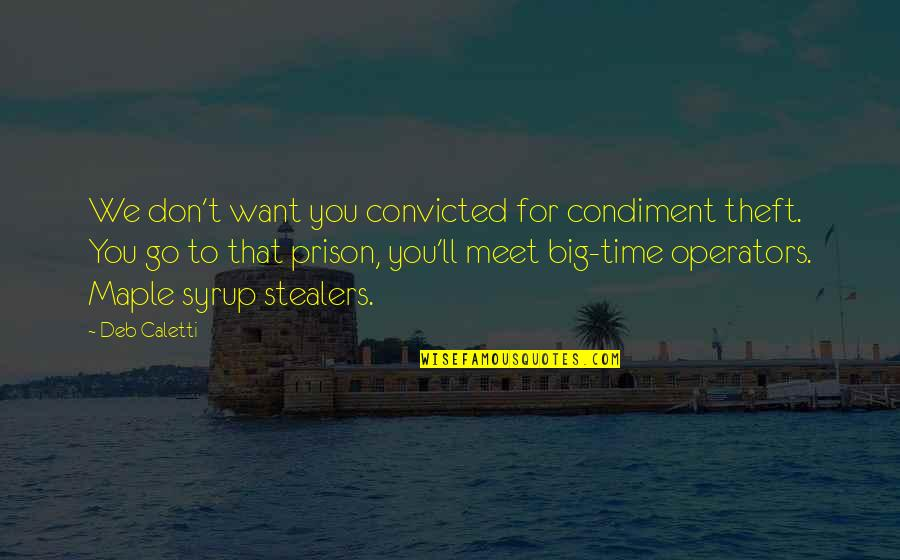 Stealers Quotes By Deb Caletti: We don't want you convicted for condiment theft.