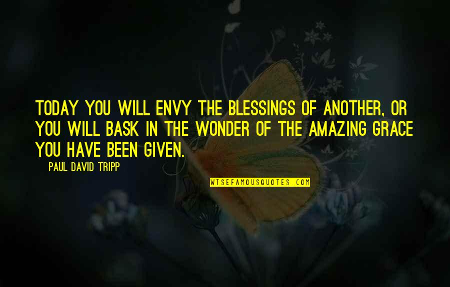 Stealers Quotes By Paul David Tripp: Today you will envy the blessings of another,