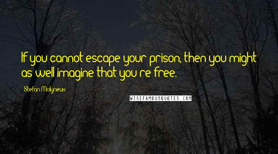 Stefan Molyneux quotes: If you cannot escape your prison, then you might as well imagine that you're free.