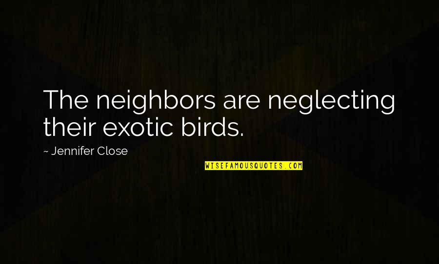 Stepping On Legos Quotes By Jennifer Close: The neighbors are neglecting their exotic birds.