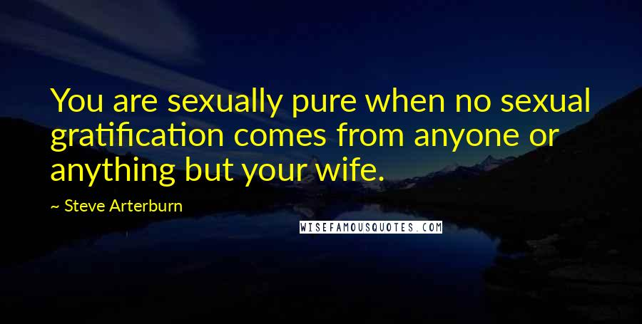 Steve Arterburn quotes: You are sexually pure when no sexual gratification comes from anyone or anything but your wife.