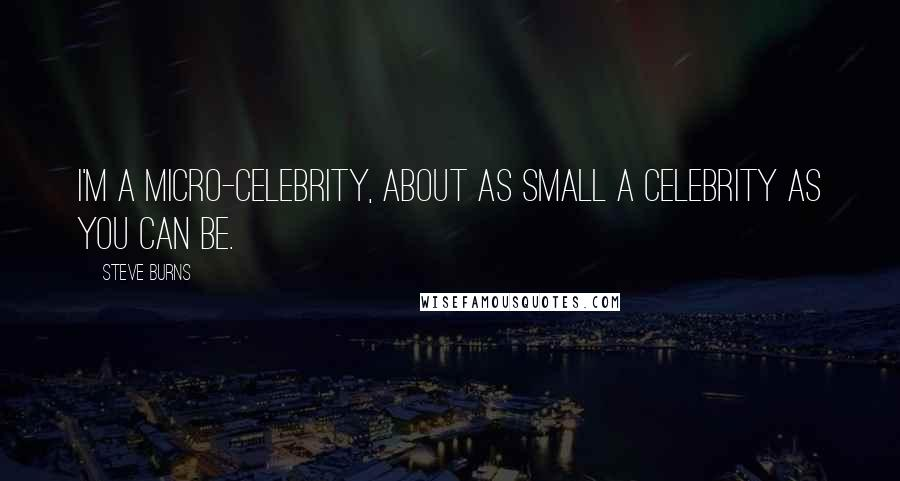 Steve Burns quotes: I'm a micro-celebrity, about as small a celebrity as you can be.