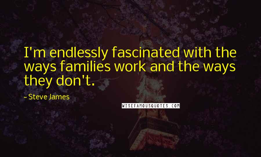 Steve James quotes: I'm endlessly fascinated with the ways families work and the ways they don't.