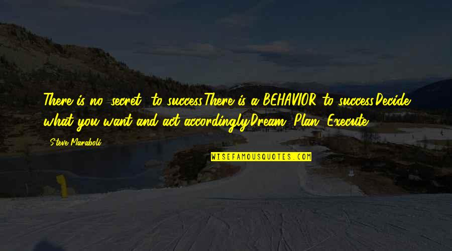 Steve Maraboli Quotes By Steve Maraboli: There is no 'secret' to success.There is a