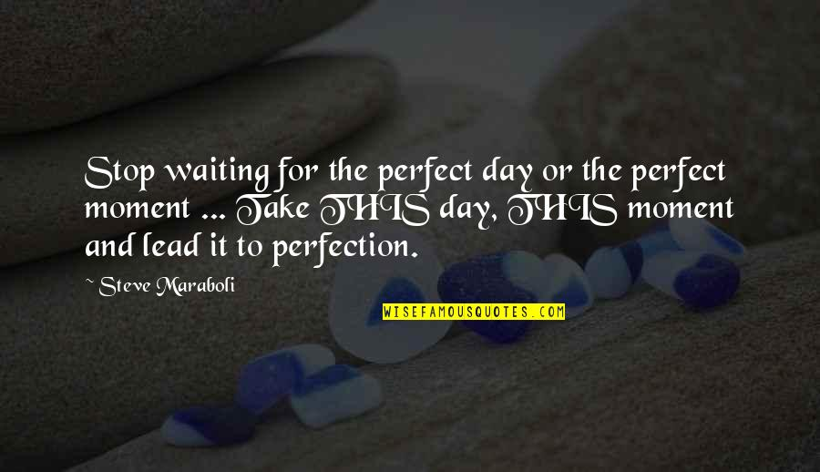 Steve Maraboli Quotes By Steve Maraboli: Stop waiting for the perfect day or the
