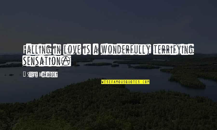 Steve Maraboli Quotes By Steve Maraboli: Falling in love is a wonderfully terrifying sensation.