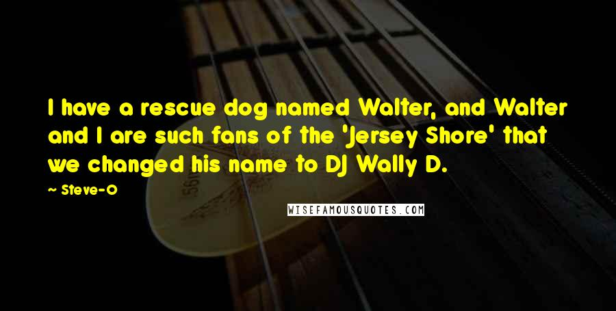Steve-O quotes: I have a rescue dog named Walter, and Walter and I are such fans of the 'Jersey Shore' that we changed his name to DJ Wally D.