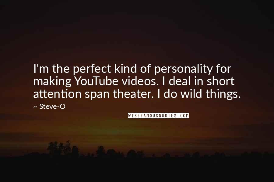 Steve-O quotes: I'm the perfect kind of personality for making YouTube videos. I deal in short attention span theater. I do wild things.