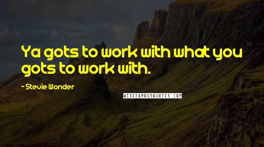 Stevie Wonder quotes: Ya gots to work with what you gots to work with.