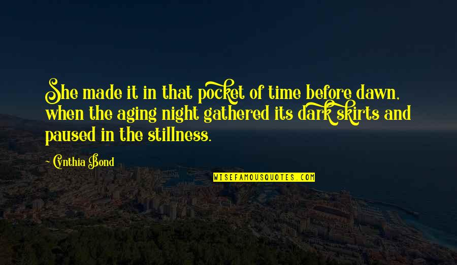 Stillness Of Night Quotes By Cynthia Bond: She made it in that pocket of time