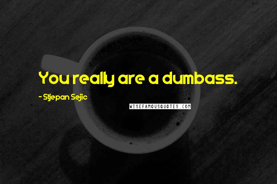 Stjepan Sejic quotes: You really are a dumbass.
