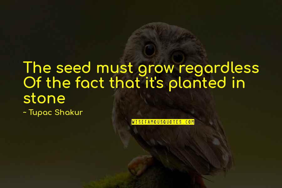 Stones Quotes By Tupac Shakur: The seed must grow regardless Of the fact