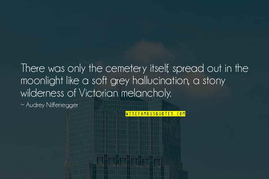 Stony Quotes By Audrey Niffenegger: There was only the cemetery itself, spread out