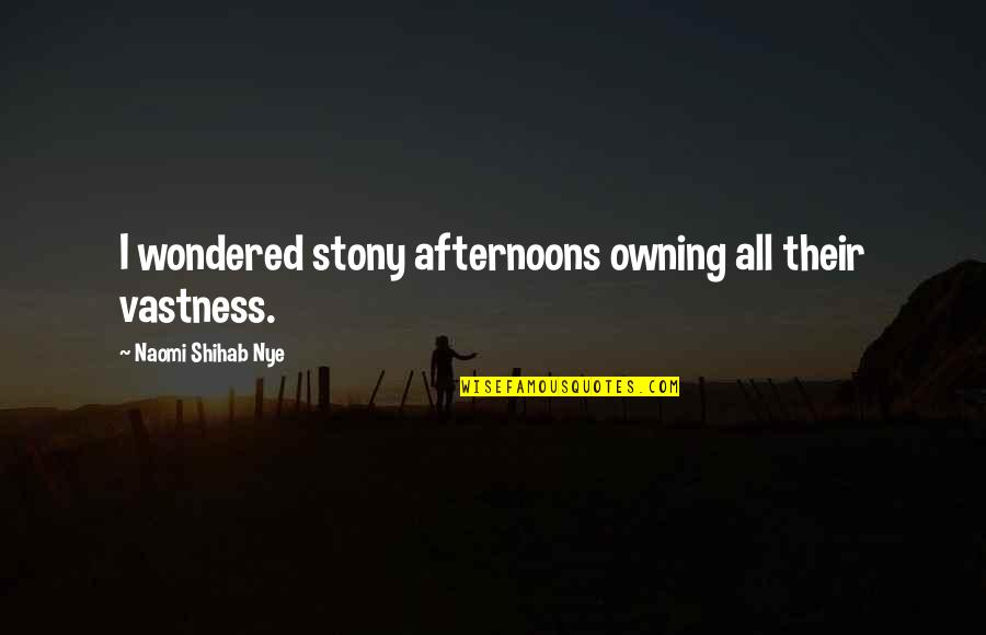 Stony Quotes By Naomi Shihab Nye: I wondered stony afternoons owning all their vastness.
