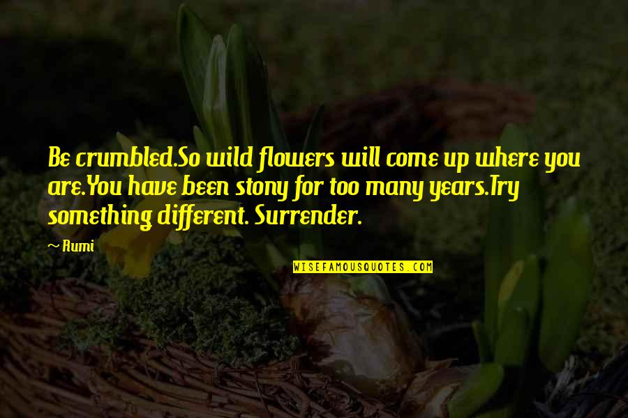 Stony Quotes By Rumi: Be crumbled.So wild flowers will come up where