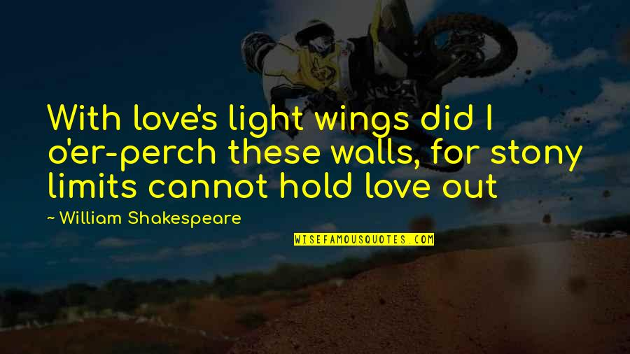 Stony Quotes By William Shakespeare: With love's light wings did I o'er-perch these