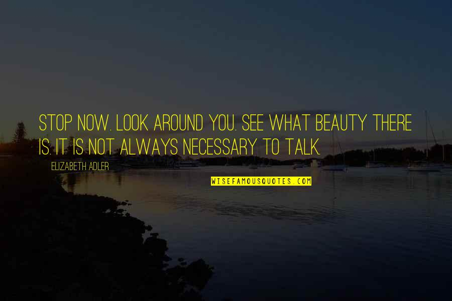 Stop And Look Around Quotes By Elizabeth Adler: Stop now. Look around you. See what beauty