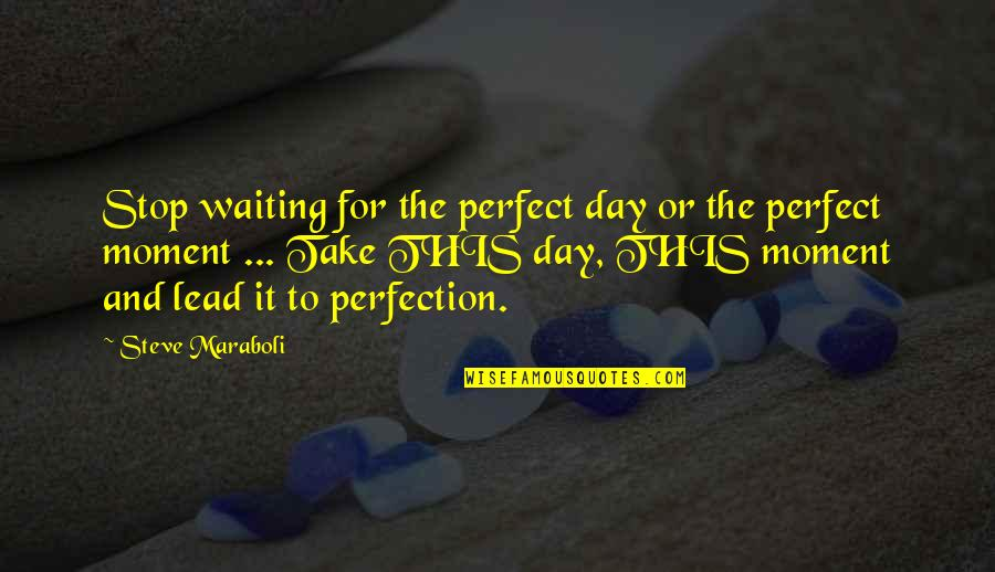 Stop Waiting Quotes By Steve Maraboli: Stop waiting for the perfect day or the