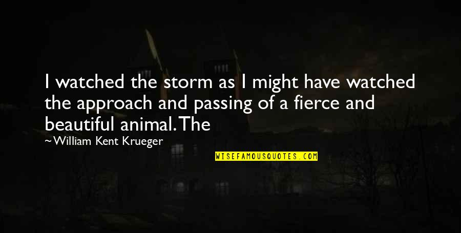 Storm Passing Quotes By William Kent Krueger: I watched the storm as I might have
