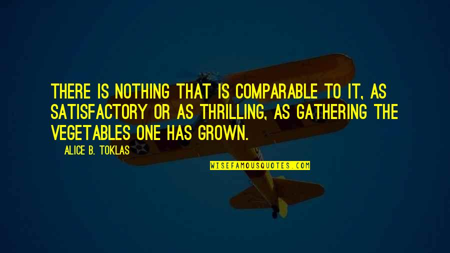 Storms And Rain Quotes By Alice B. Toklas: There is nothing that is comparable to it,