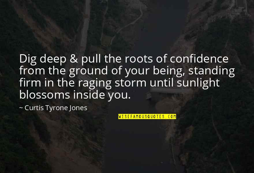 Storms In Your Life Quotes By Curtis Tyrone Jones: Dig deep & pull the roots of confidence