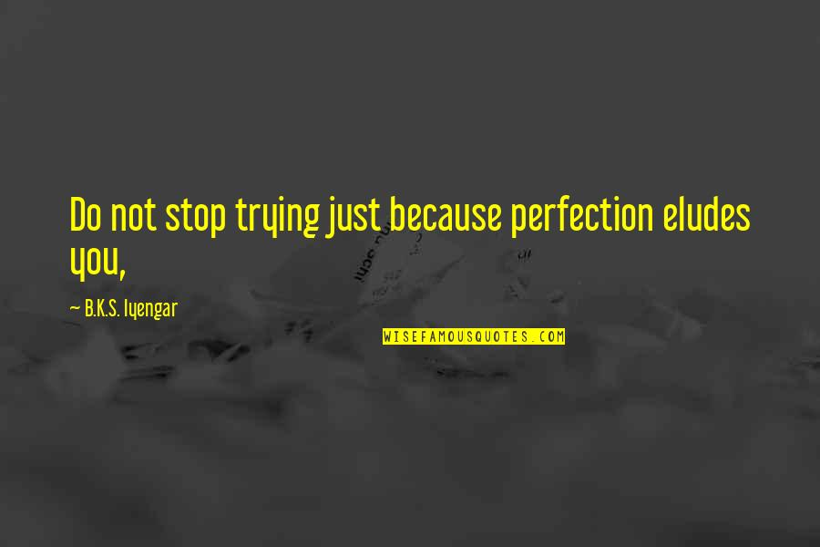 Story Continues Quotes By B.K.S. Iyengar: Do not stop trying just because perfection eludes