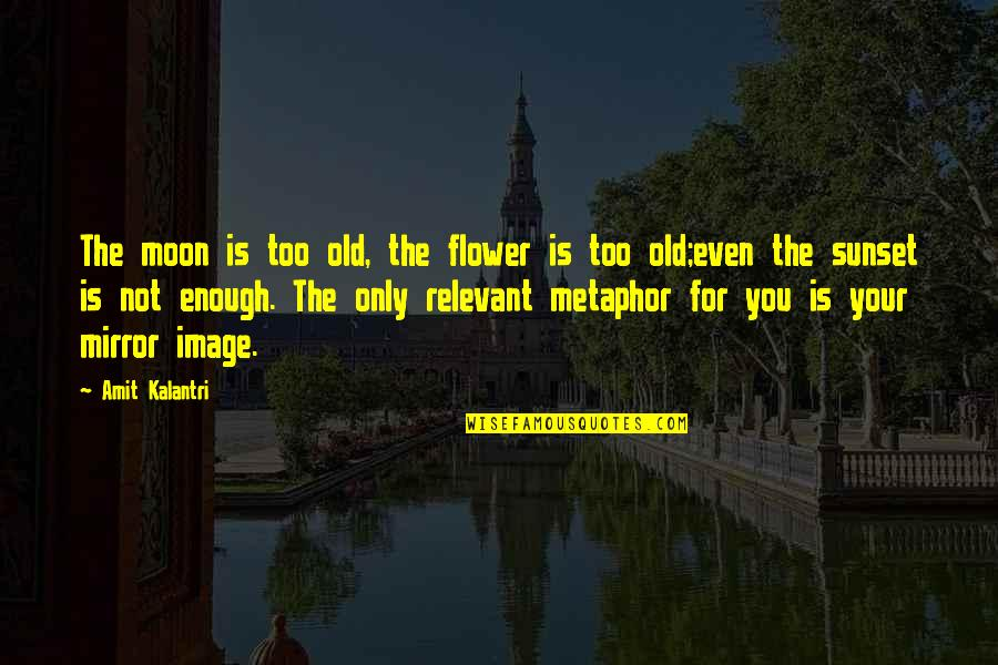 Story Love Quotes By Amit Kalantri: The moon is too old, the flower is
